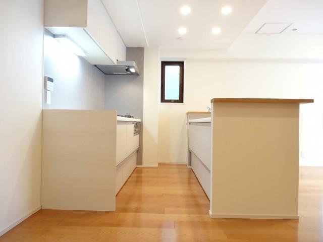 藤和青葉台コープ キッチンスペース203