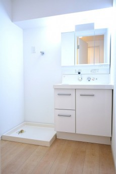 ライオンズマンション南平台 洗面化粧台と洗濯機置場