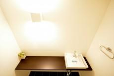 ヴァンヴェール南平台 トイレの手洗いカウンター501