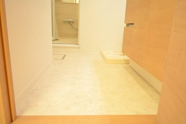 ライオンズマンション赤堤第2 洗面室106