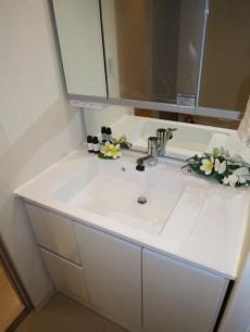 サンクタス池袋ベルマージュ 使い勝手良さそうな洗面化粧台