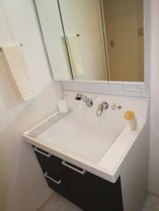 ディアライフ大塚 使いやすそうな洗面化粧台