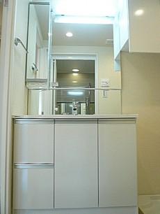 エス・コート駒沢 洗面化粧台