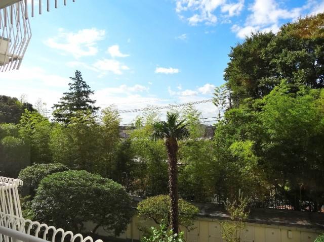 ガーデンハウス 緑に囲まれています