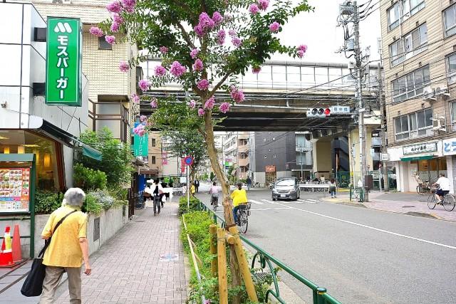 パラッシオ用賀 用賀駅前