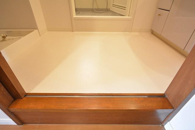 コスモ学芸大学 洗面室