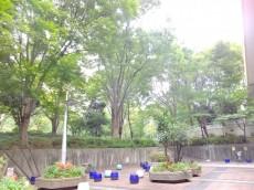 コンシェリア西新宿 公園