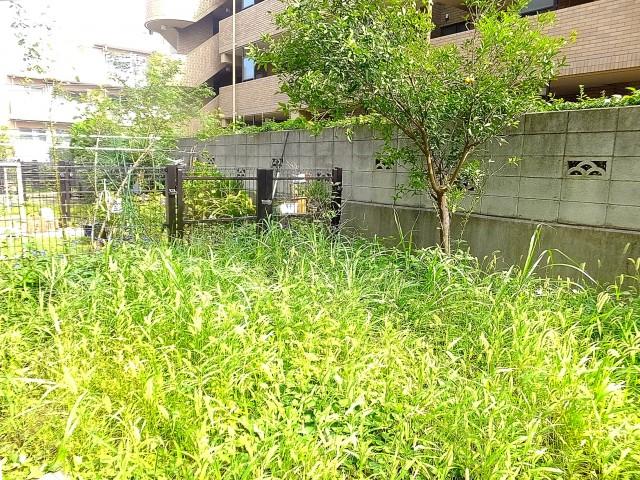 尾山台リバーサイドハイデンス 専用庭