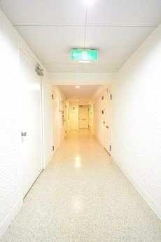 ハイツ赤坂 共用廊下