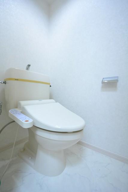 ネオ荻窪ハイム トイレ