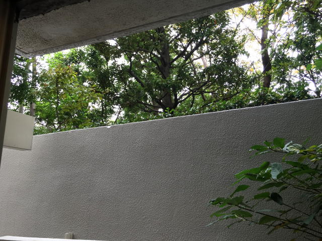 三軒茶屋サンハイツ 眺望
