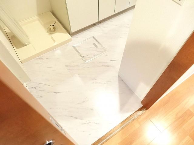 スターロワイヤル南大井 洗面室