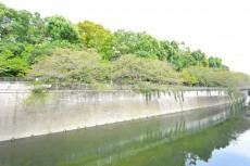 フジタ関口マンション 神田川