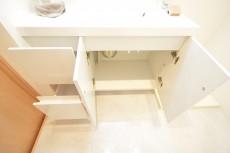 フジタ関口マンション 洗面台 501