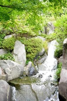 プチモンド目白 周辺環境 目白庭園