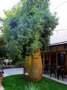 協栄メゾン代々木 周辺環境