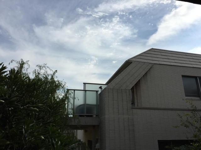 トーカンマンション元代々木 眺望