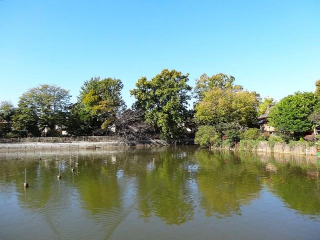 卓巳コーポ 碑文谷公園