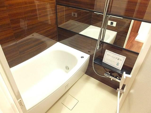 センチュリープラチナマンション大井町 バスルーム