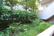 マイキャッスル田園調布 玄関前の植栽