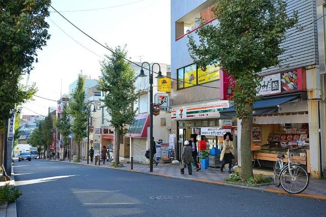 ドミシール田園 商店街