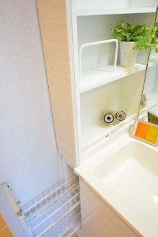 大森山王リハイム 洗面化粧台収納