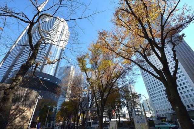 ハイネス大久保 西新宿の高層ビル群