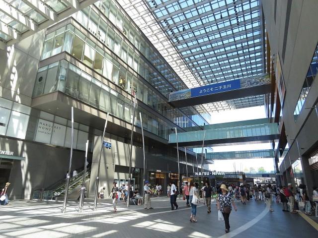 ライオンズマンション上野毛 二子玉川駅