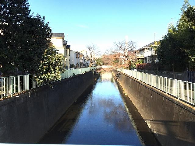 パールハイツ桜上水 周辺環境