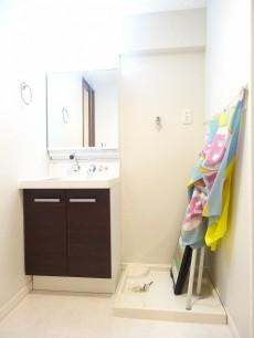 グランドメゾン碑文谷 洗面化粧台と洗濯機置場