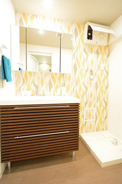 玉川スカイハイツ 洗面化粧台と洗濯機置場