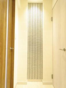 セザール白金 廊下のエコカラット