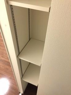 東京マスタープレイス 洋室約5.5帖収納