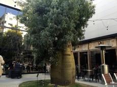 マルモール代々木 周辺環境
