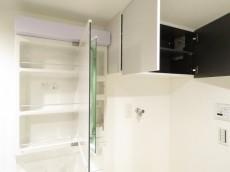秀和南品川レジデンス 洗面化粧台と洗濯機置場
