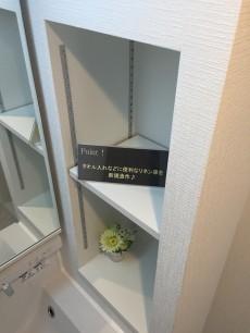 カサベルド富士見 洗面台収納