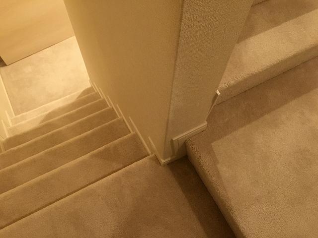 キャニオングランデ荻窪 階段