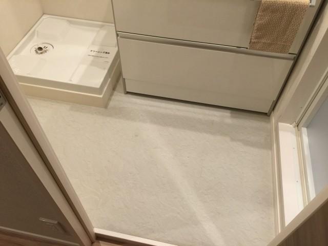 砧公園ヒミコマンション 洗面室