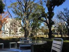 中野ハイネスコーポ 周辺環境