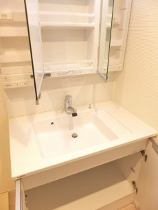上野ロイヤルハイツ 洗面台