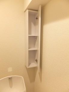 上野ロイヤルハイツ トイレ棚