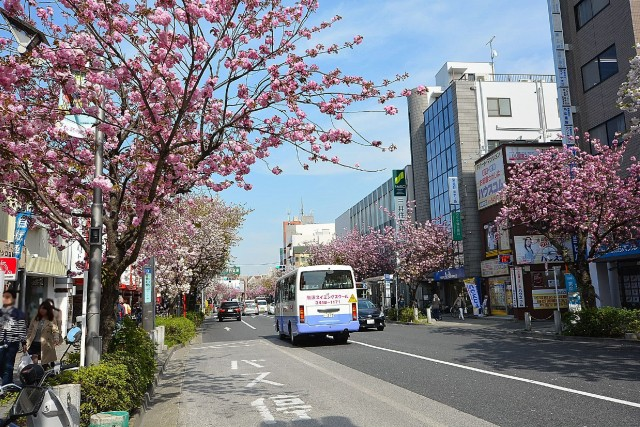 弦巻ハイツ 桜新町駅周辺