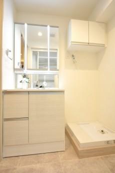 世田谷三宿サンハイツ 洗面化粧台と洗濯機置場