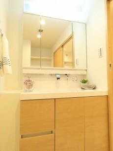柿の木坂パレス 洗面化粧台