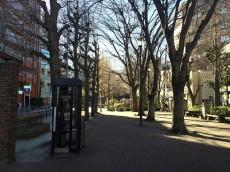 ライオンズマンション小石川植物園 周辺環境