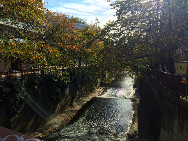 クレッセント池尻大橋 周辺環境