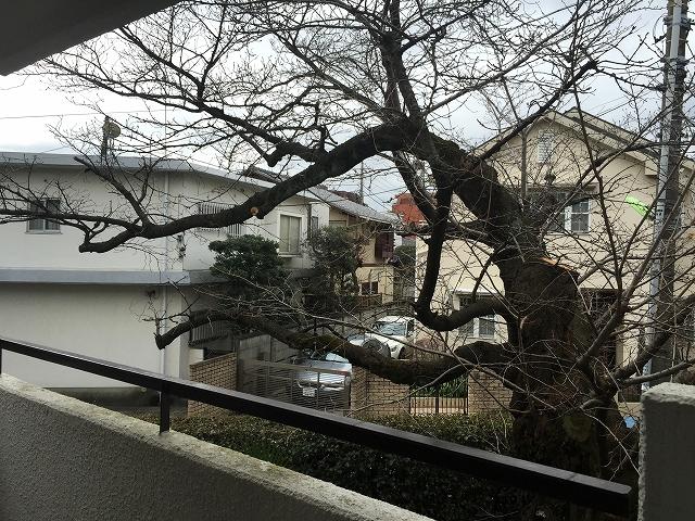 コートハウス上野毛 リビングダイニングキッチンバルコニー眺望