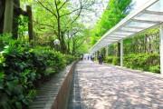 モアグランデ浜松町 浜松町駅周辺