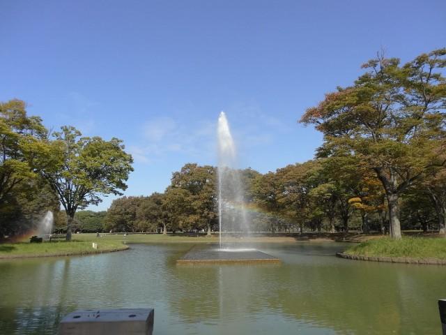 クオリア神南フラッツ 代々木公園