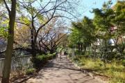 江戸川橋ダイヤハイツ 江戸川公園